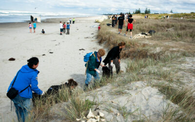 Join Our Virtual Beach Cleanup on July 25!