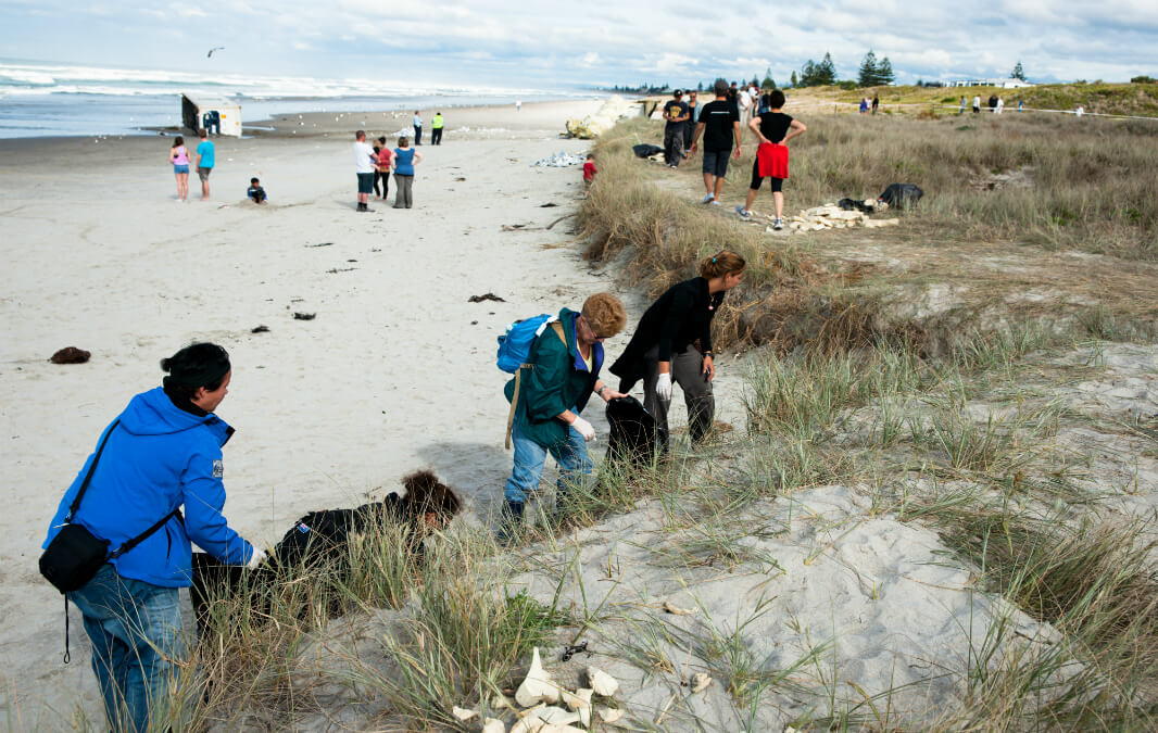 Group of people holding a beach clean up